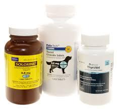 pet meds for dogs archives vetrxdirect blogvetrxdirect blog