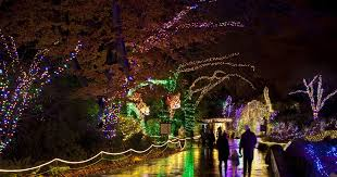 where to see holiday light displays in seattle bellevue and