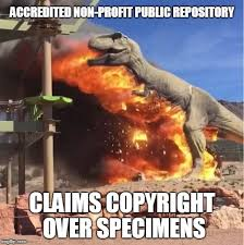 Meme Generator Copyright - the flaming t rex and other new paleo memes sauropod vertebra