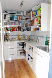 walk in pantries need much bigger but like the idea of a sink
