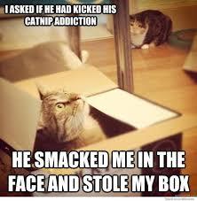 Internet Husband Meme - cats wife meme weknowmemes