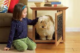 Diy End Table Dog Crate by Diy Dog Crate Coffee Table Petdiys Com