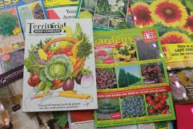 Garden For Family Of 4 Get Free Seed Catalogs And Plant Catalogs
