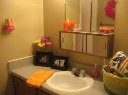 College Apartment Living Room Decorating Ideas College Apartment Bathroom Light Bright Guest Bathroom Revealbest