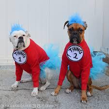 Boxer Puppy Halloween Costumes Late U0027s Halloween Chuckle