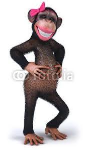 Sexy Monkey Meme - 23 best sexy instinto animal images on pinterest french girls ha