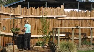 ideas for backyard fences home outdoor decoration