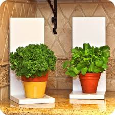 plants decoration at home 99 great ideas to display houseplants