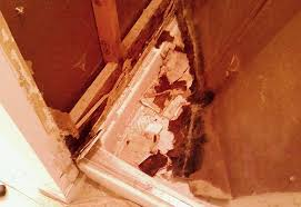 Mold Smell In Bathroom Diy Bathroom Remodeling Tips Guide Help Do It Yourself Techniques