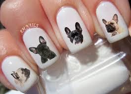 54 french bulldog nail decals