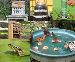 Wildlife Garden Ideas 10 Cool Ways To Attract Endless Wildlife To Your Backyard