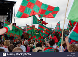 County Flags County Mayo Gaa Fans With County Flags At A Game Republic Of