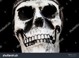 Human Anatomy Skull Bones Human Anatomy Ancient People Skull Bone Stock Photo 114239782