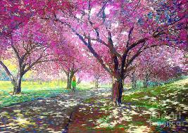cherry blossom tree facts cherry blossom tree cherry blossom trees southern living 20