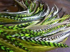 owlita earrings steve vai guitars 検索 the green meanie