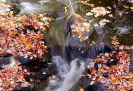 fall foliage ramble connecticut u0027s northeast corner u2013 steve grant