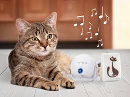 Suche G Stige Einbauk He Cat Doorbell Katzenklingel Für Deine Miezekatze