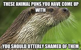 Animal Pun Meme - these animal puns you have come up with you should otterly shamed