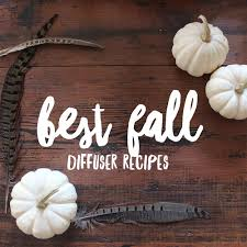 best fall diffuser recipes thewhitebuffalostylingco com