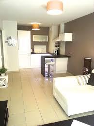 amenagement salon cuisine 30m2 meilleur de amenagement salon cuisine charmant décor à la maison