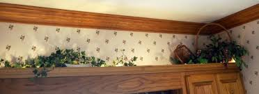top of kitchen cabinet greenery browse bid and win browse auctions search exclude closed