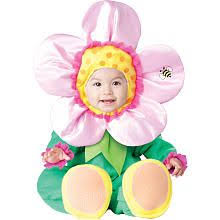 Halloween Costumes Infant Girls Koala Baby Girls Butterfly Halloween Costume Purple U0026 Pink