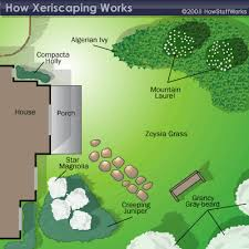 How To Plan Your Backyard How Xeriscaping Works Articles Spaces And Gardens