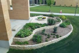 pharmacy garden explores plant roots of medicine u2013 uwmadscience