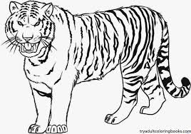 Wonderful Decoration Tiger Coloring Page 4 Mature Colors Coloring Pages Tiger