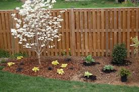 landscaping with small white tree landscaping with small trees