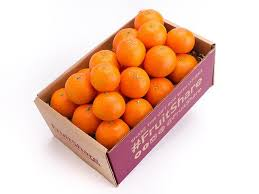 fruit delivery clementines in season fruit delivery fruitshare fruitshare