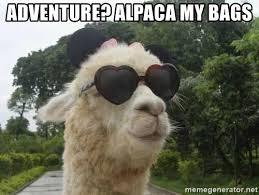 adventure alpaca my bags deal with alpaca meme generator