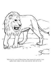 animal drawings coloring pages lion animal identification