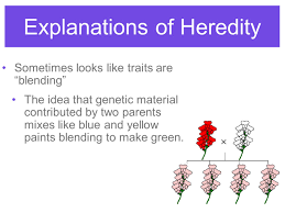 heredity molecular biology sumner high sometimes looks