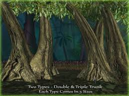 second marketplace rainforest trees 16 jungle trees