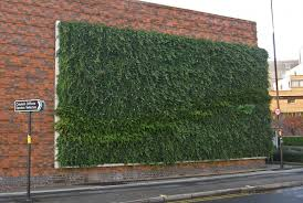 living wall indoor exterior images of green walls for offices