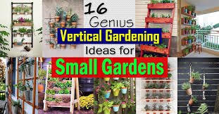 Small Garden Plants Ideas 16 Genius Vertical Gardening Ideas For Small Gardens Balcony