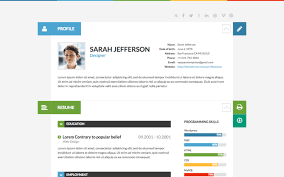 Wordpress Resume Themes Top 12 Best Wordpress Resume Themes For Online Cvs