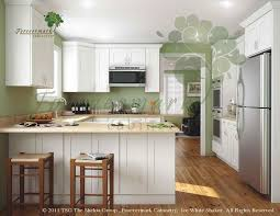 bamboo kitchen cabinets rta bamboo flat panel door cabinet