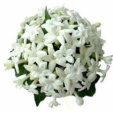 wedding flowers gold coast 56 best wedding flowers gold coast images on gold