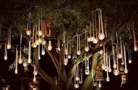 lights hanging from trees wedding search bist reception