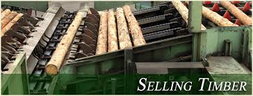 sell timber sell land sell trees piedmont land timber inc