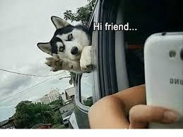 Hi Memes - hi friend friends meme on me me