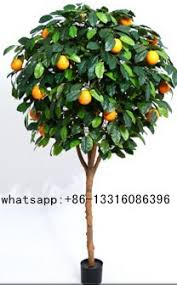 sjgs 15 artificial lemon tree ornamental bonsai tree evergreen