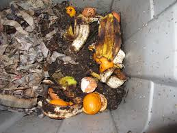 How To Make Organic Manure From Kitchen Waste The Joys Of Vermicomposting Farmyards