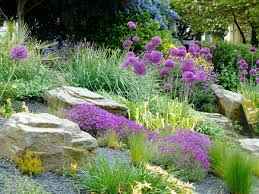 lawn u0026 garden amazing backyard rock garden landscape ideas