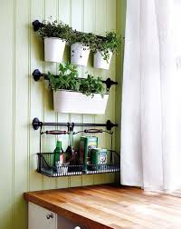 Indoor Herb Garden Ideas by Best 25 Indoor Vegetable Gardening Ideas On Pinterest Gardening