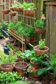 design garden vegetable container gardening carolbaldwin