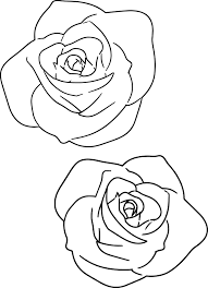 large pink rose coloring page wecoloringpage