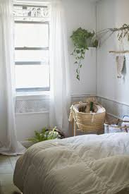 124 best house plants images on pinterest plants home and